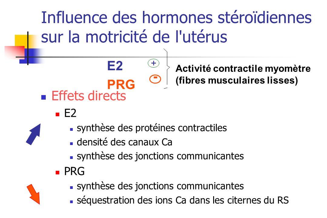 Influence des hormones stéroïdiennes sur la motricité de l utérus