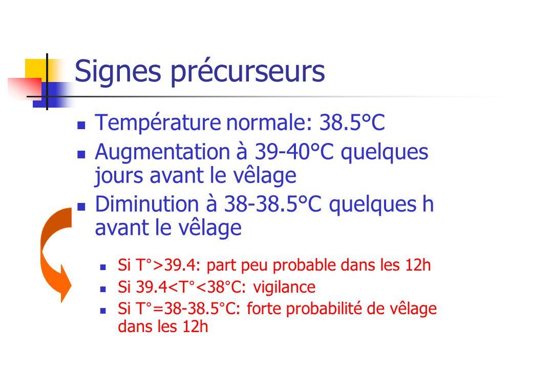 Signes précurseurs Température normale: 38.5°C