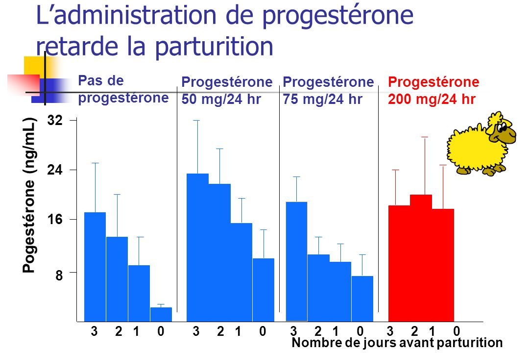 L'administration de progestérone retarde la parturition