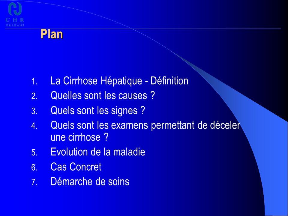 Plan La Cirrhose Hépatique - Définition Quelles sont les causes