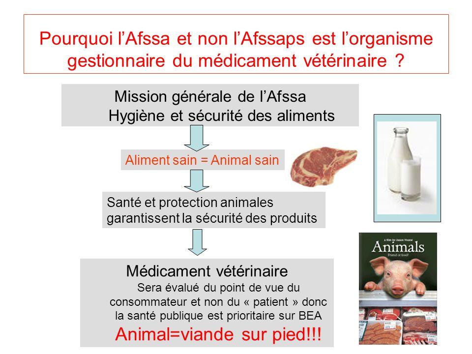 Animal=viande sur pied!!!