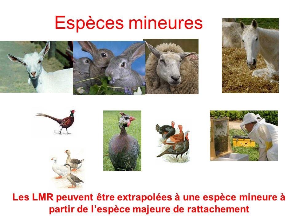 Espèces mineures Les LMR peuvent être extrapolées à une espèce mineure à partir de l'espèce majeure de rattachement.