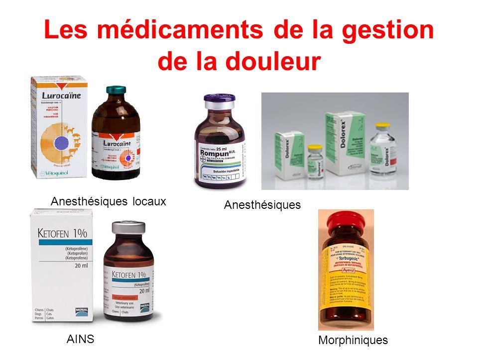Les médicaments de la gestion de la douleur