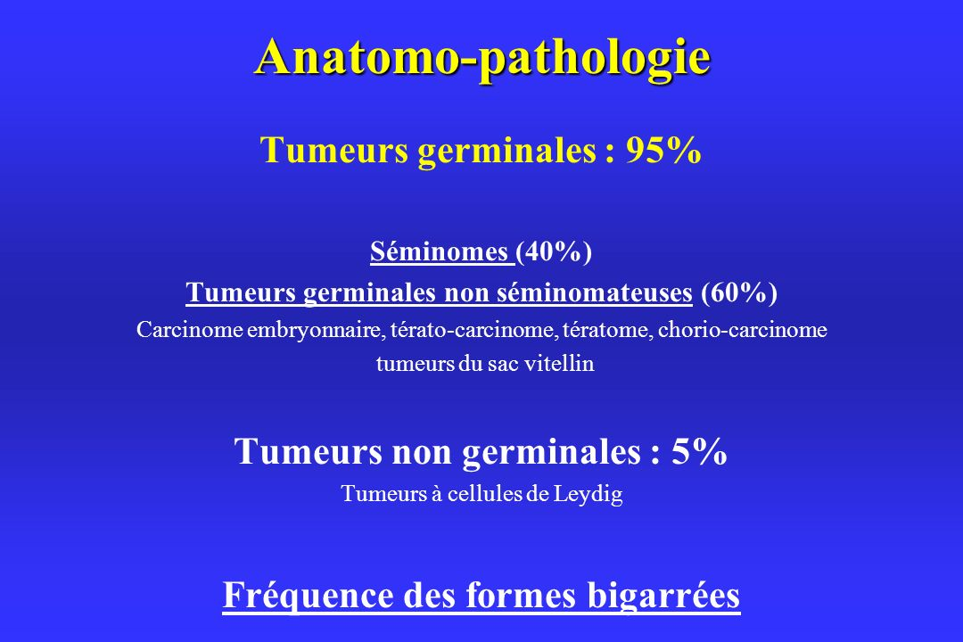 Anatomo-pathologie Tumeurs germinales : 95%