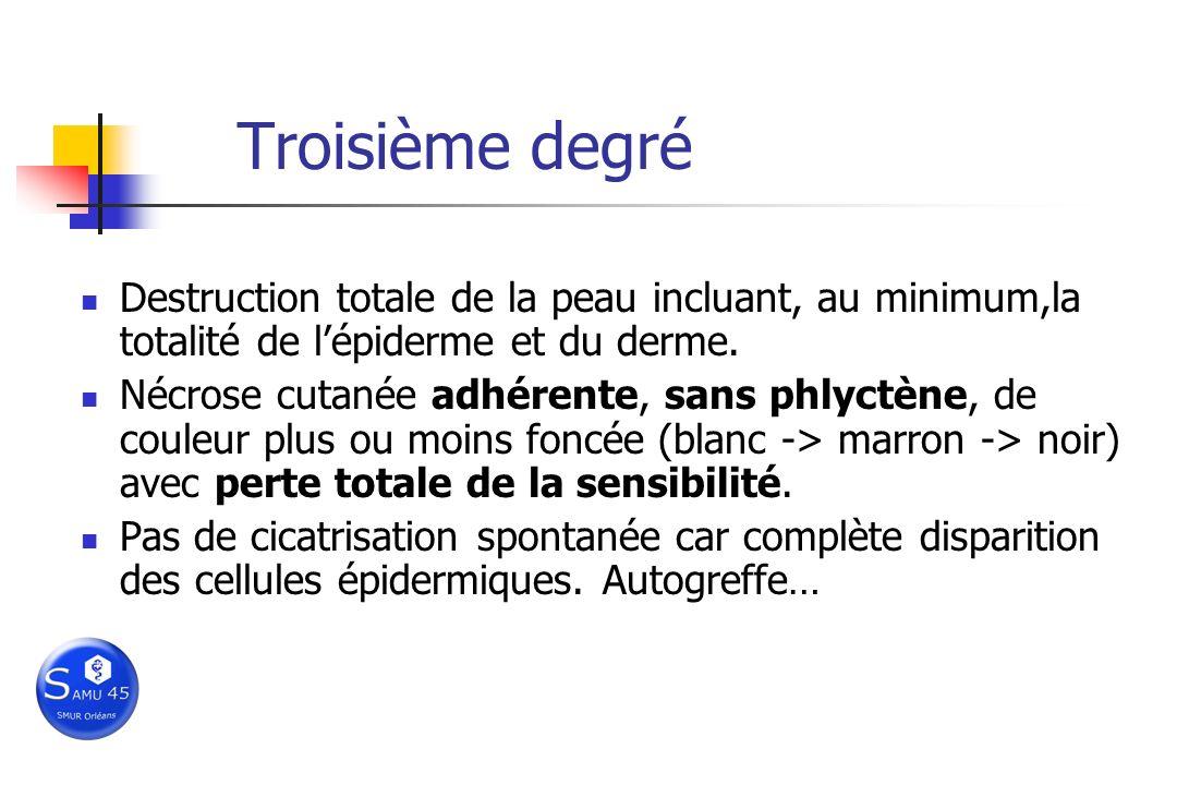 Troisième degré Destruction totale de la peau incluant, au minimum,la totalité de l'épiderme et du derme.