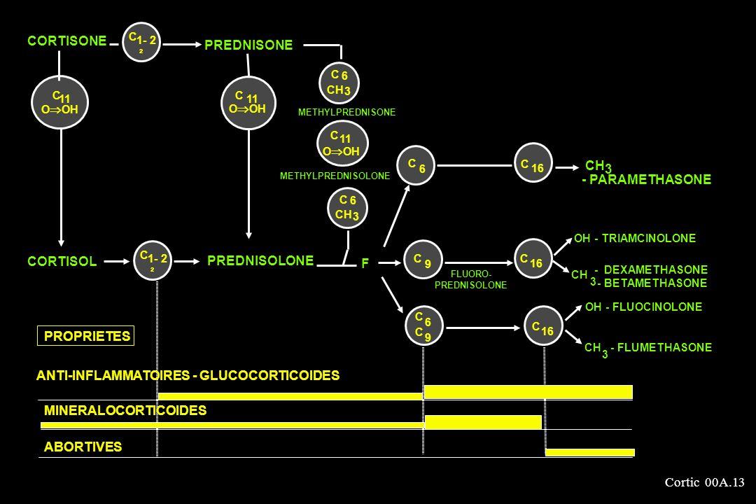 ANTI-INFLAMMATOIRES - GLUCOCORTICOIDES