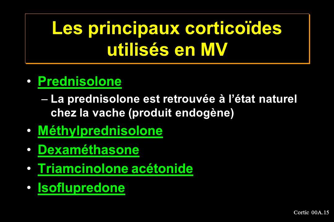 Les principaux corticoïdes utilisés en MV