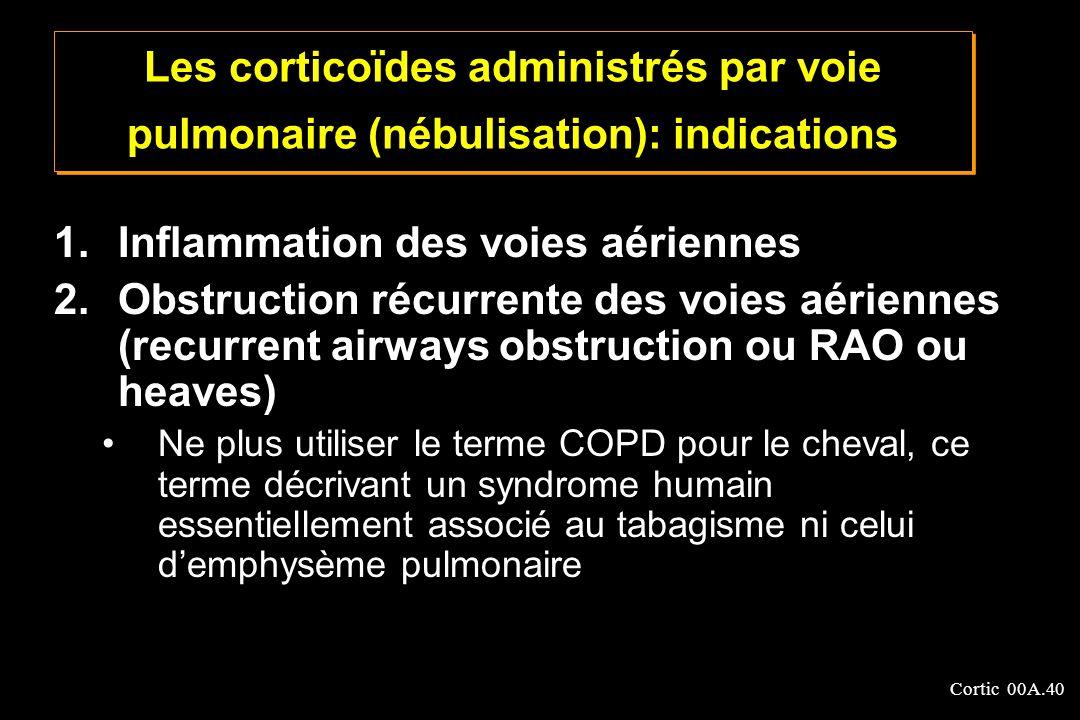 Inflammation des voies aériennes