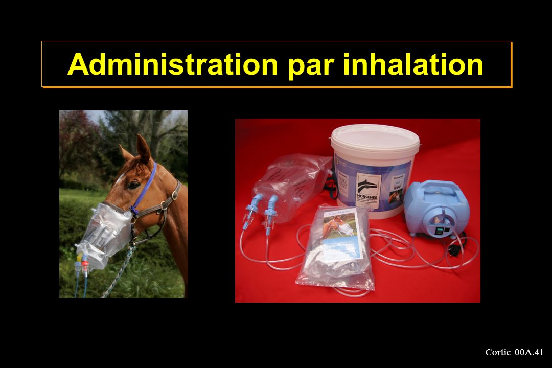 Administration par inhalation