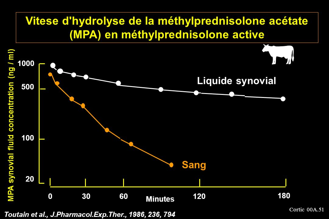MPA synovial fluid concentration (ng / ml)