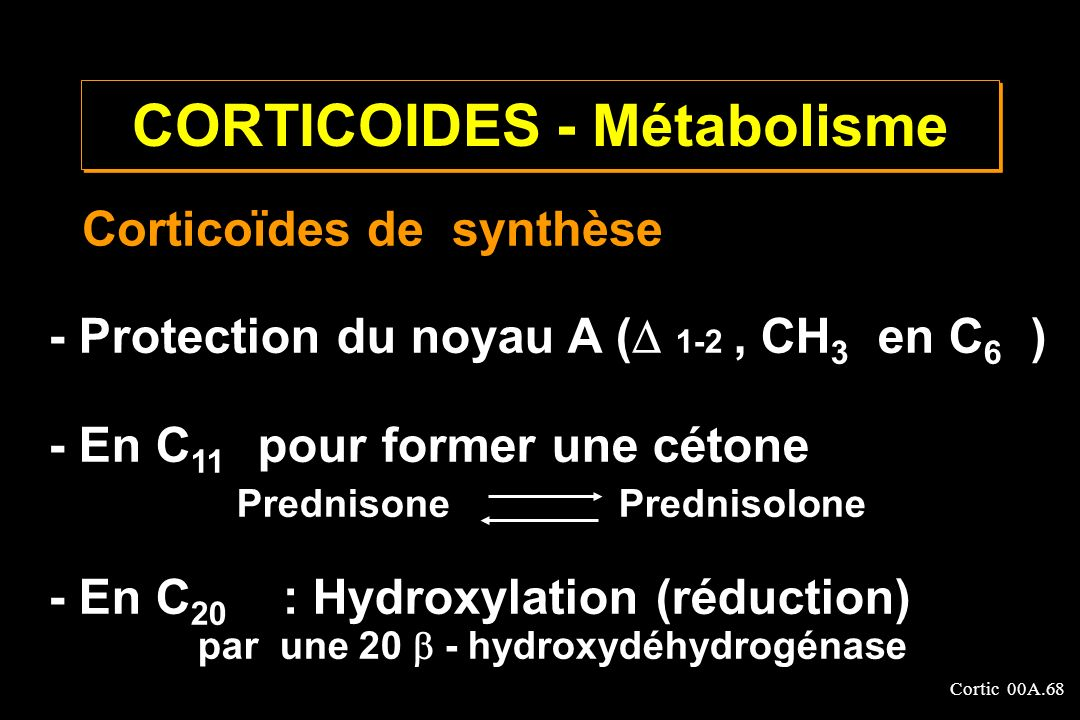 CORTICOIDES - Métabolisme