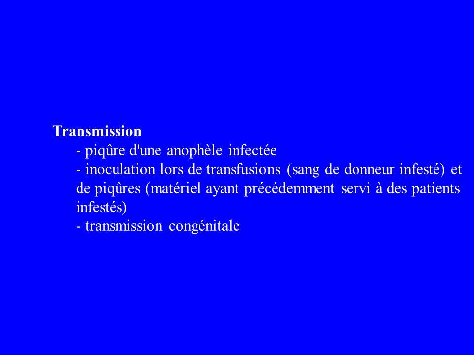 Transmission - piqûre d une anophèle infectée.