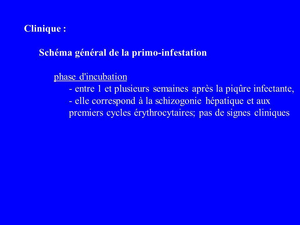 Clinique : Schéma général de la primo-infestation. phase d incubation.