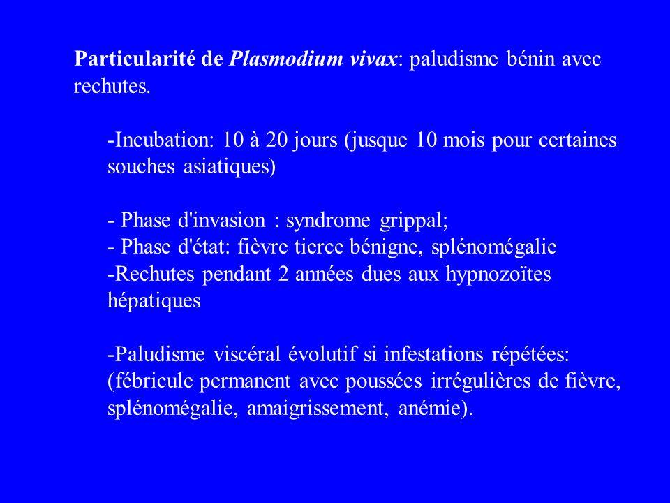 Particularité de Plasmodium vivax: paludisme bénin avec rechutes.