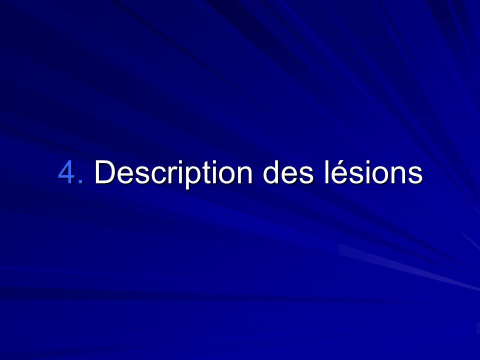 4. Description des lésions