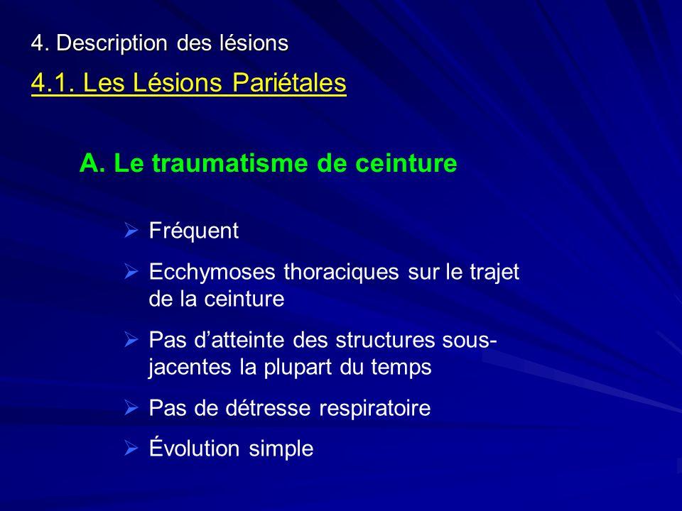 4.1. Les Lésions Pariétales