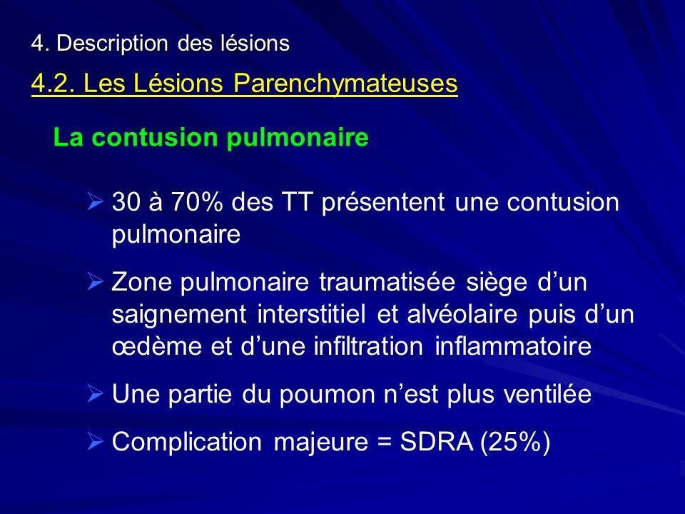 4.2. Les Lésions Parenchymateuses