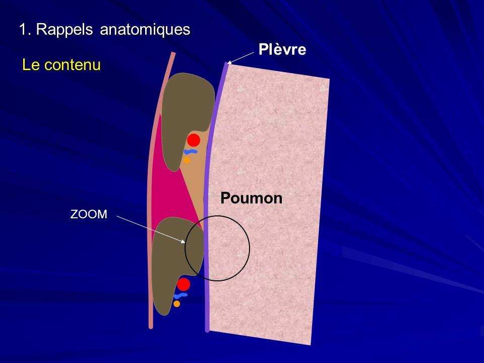 1. Rappels anatomiques Plèvre Poumon Le contenu ZOOM