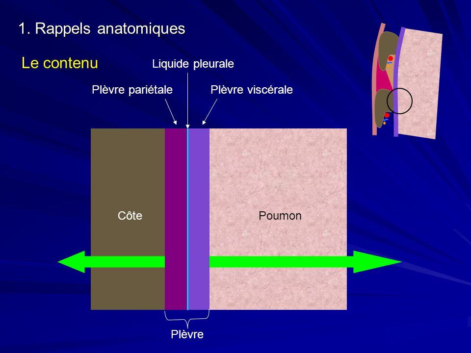 1. Rappels anatomiques Le contenu Liquide pleurale Plèvre pariétale