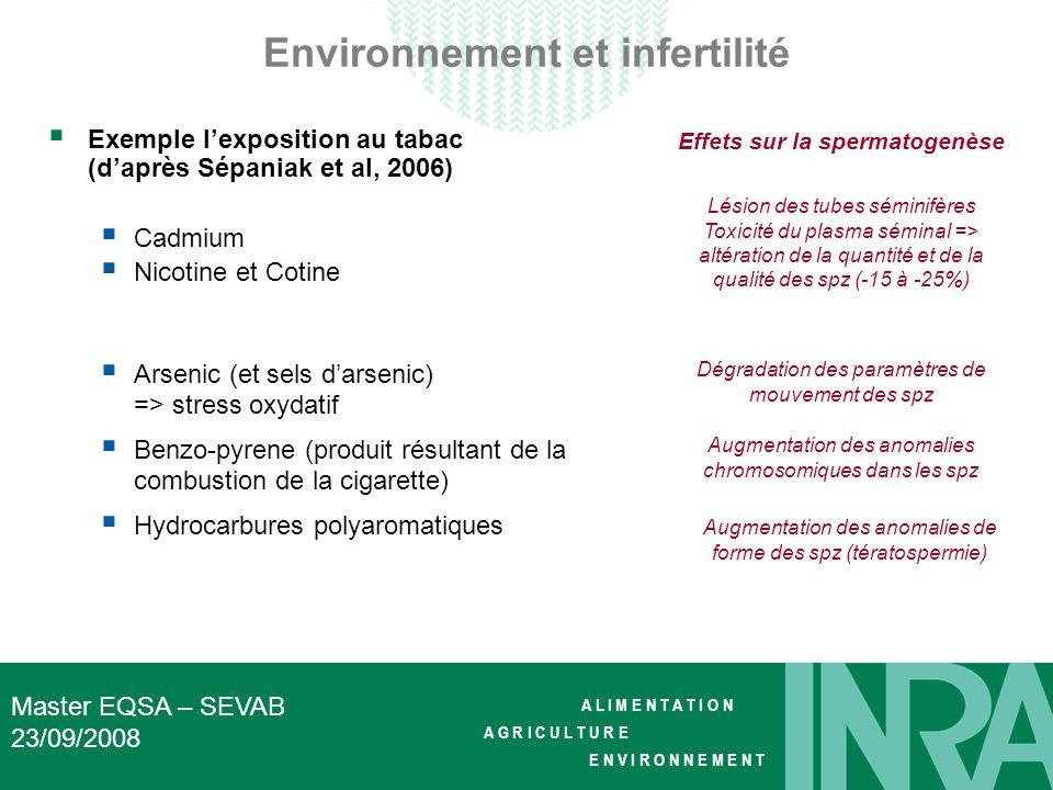 Environnement et infertilité Effets sur la spermatogenèse