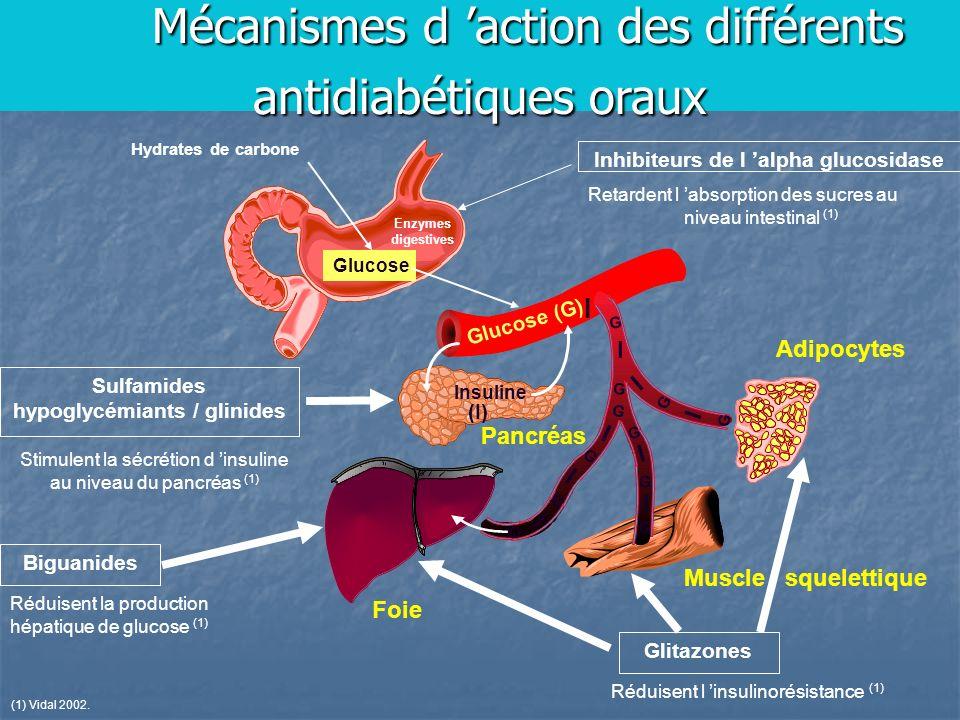 Mécanismes d 'action des différents antidiabétiques oraux