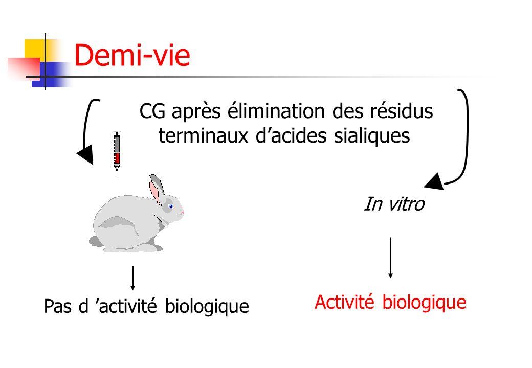 Demi-vie CG après élimination des résidus terminaux d'acides sialiques