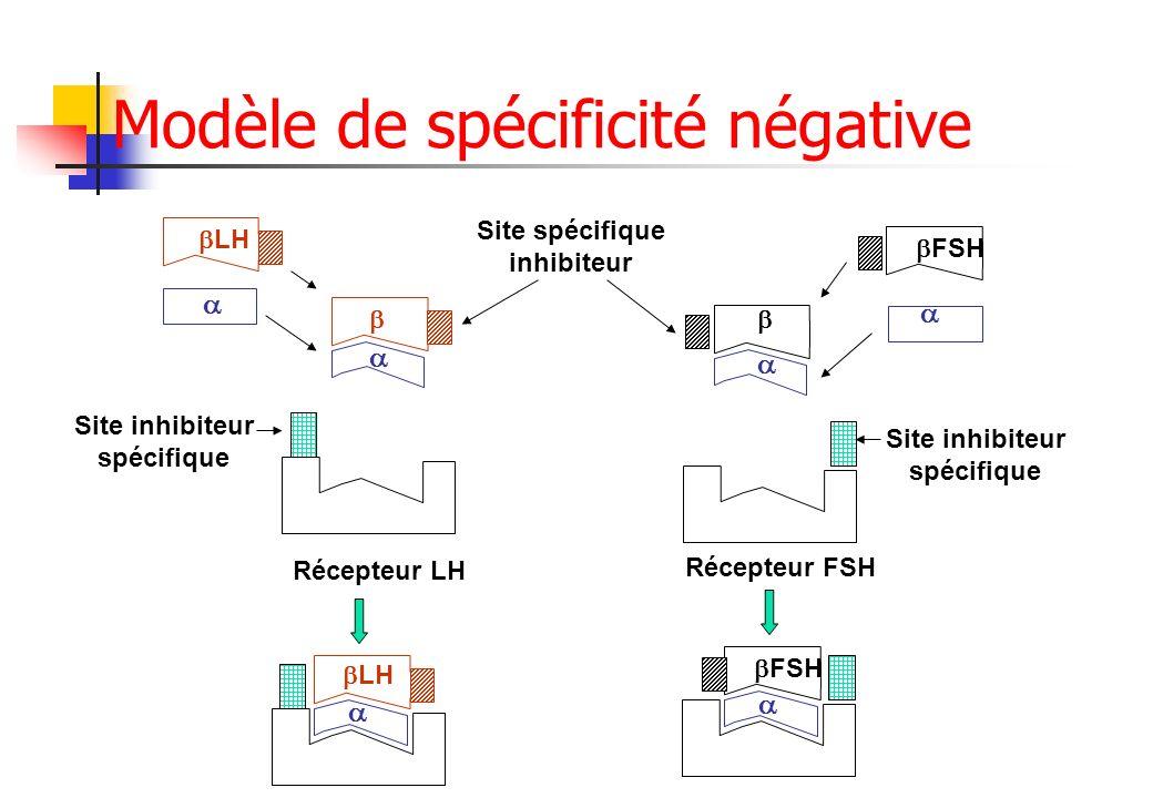 Modèle de spécificité négative