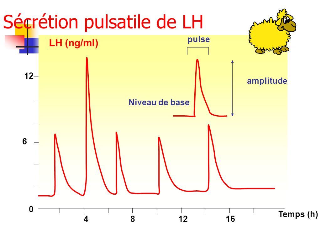 Sécrétion pulsatile de LH