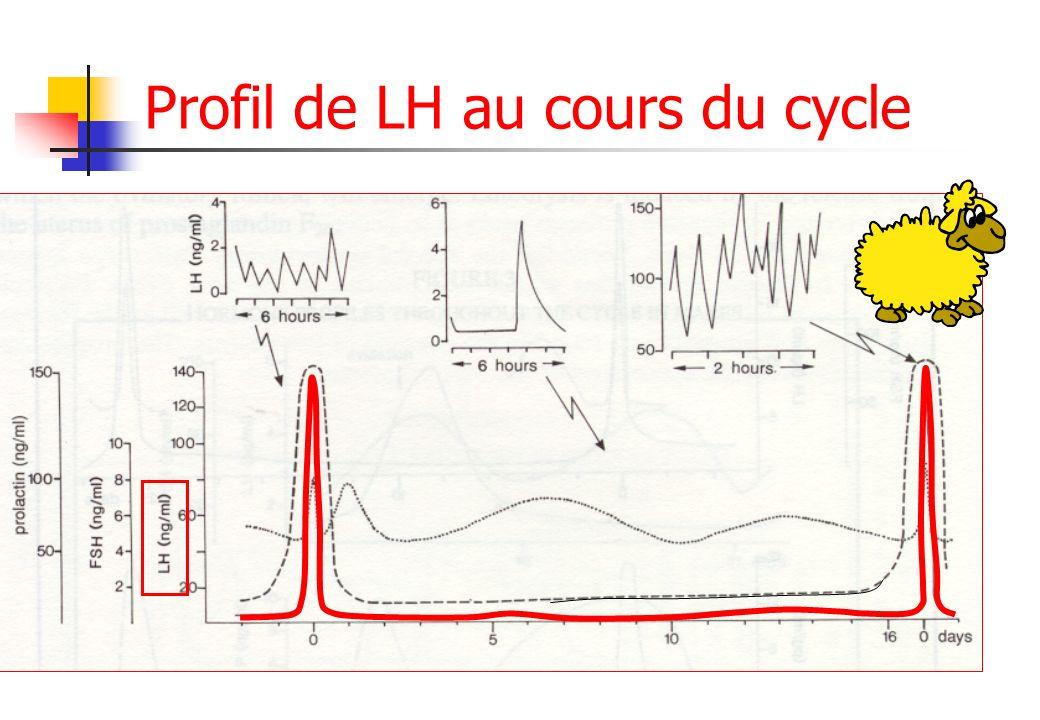 Profil de LH au cours du cycle