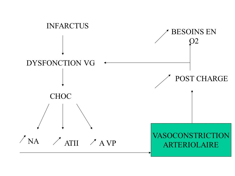 INFARCTUS BESOINS EN O2 DYSFONCTION VG POST CHARGE CHOC VASOCONSTRICTION ARTERIOLAIRE NA ATII A VP