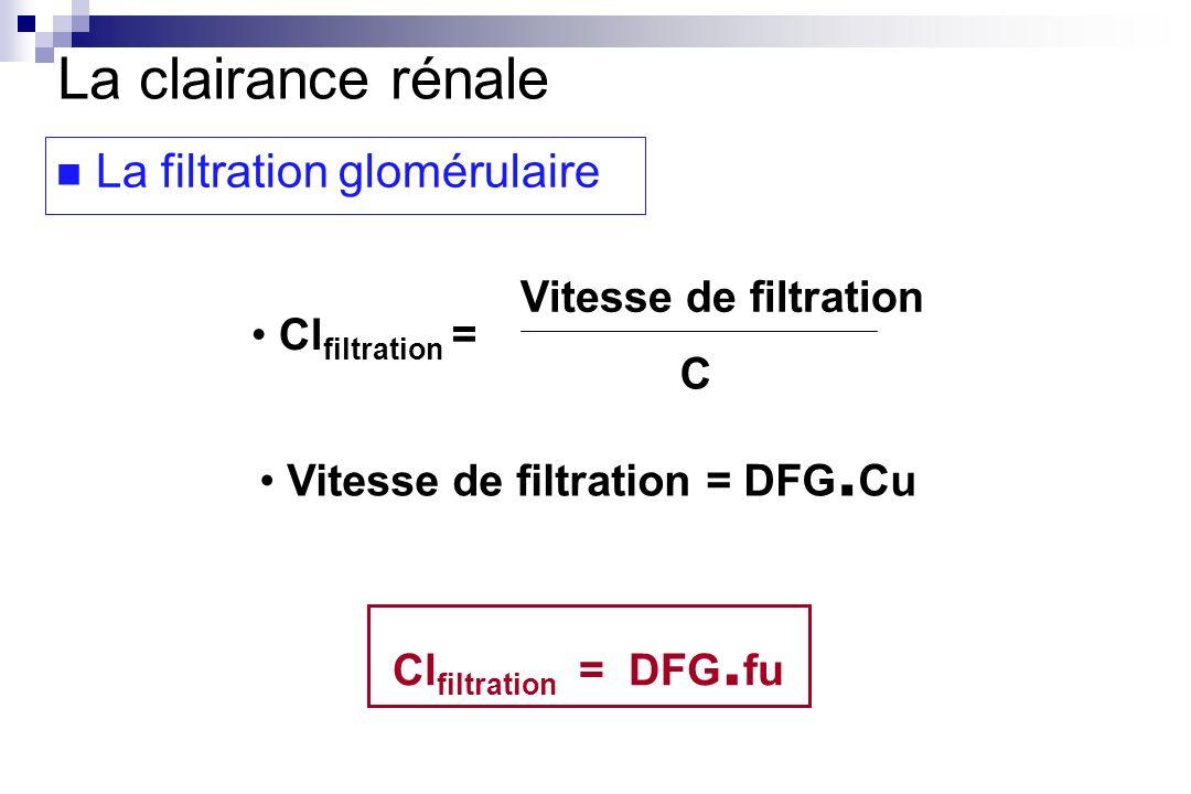 La clairance rénale La filtration glomérulaire Clfiltration =