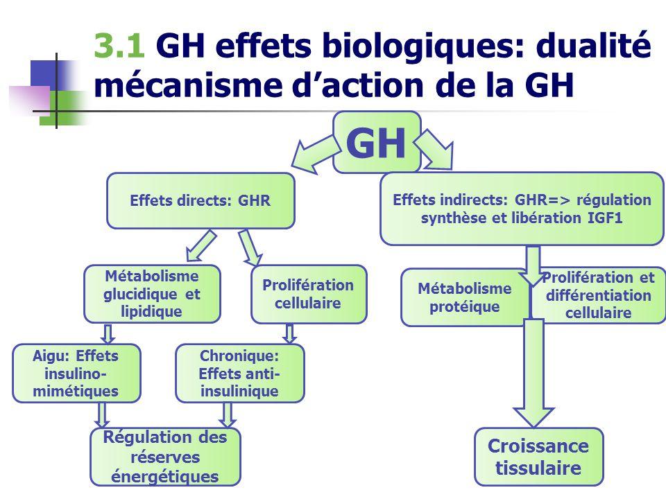 GH 3.1 GH effets biologiques: dualité mécanisme d'action de la GH