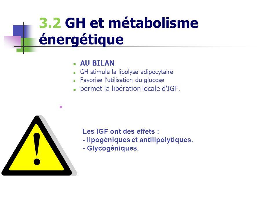 3.2 GH et métabolisme énergétique