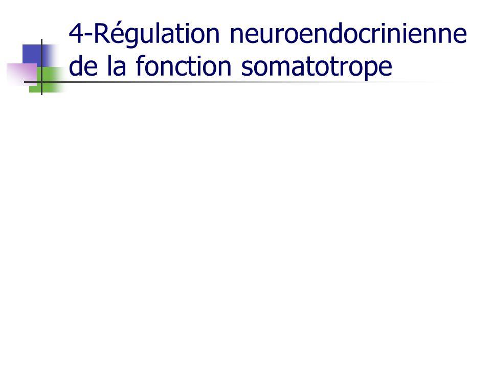 4-Régulation neuroendocrinienne de la fonction somatotrope