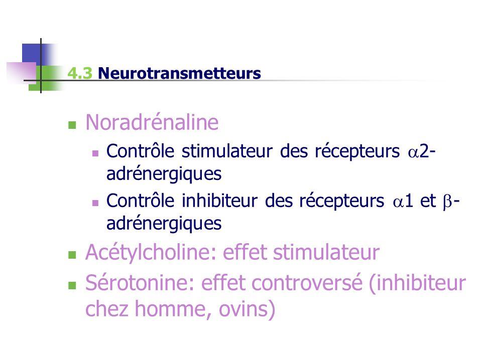 Acétylcholine: effet stimulateur