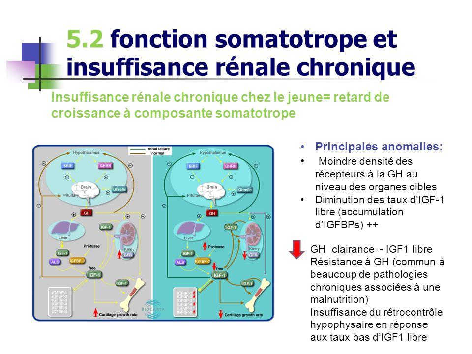 5.2 fonction somatotrope et insuffisance rénale chronique