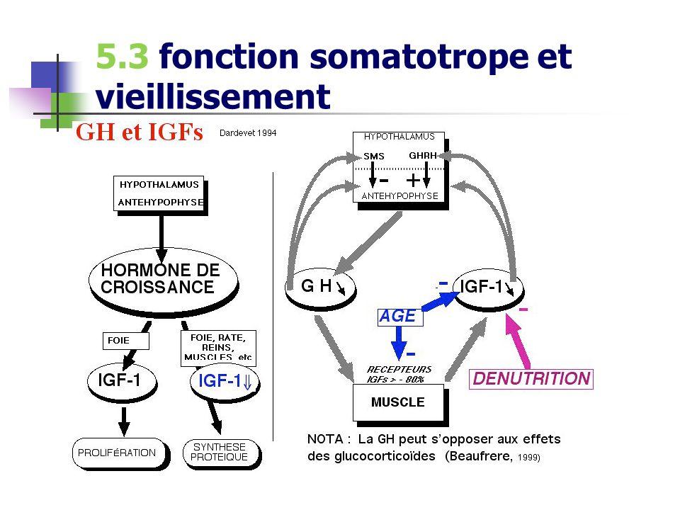 5.3 fonction somatotrope et vieillissement