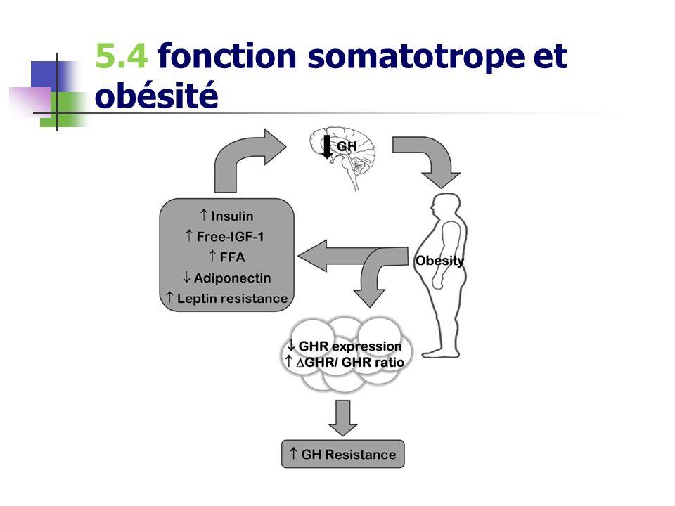 5.4 fonction somatotrope et obésité