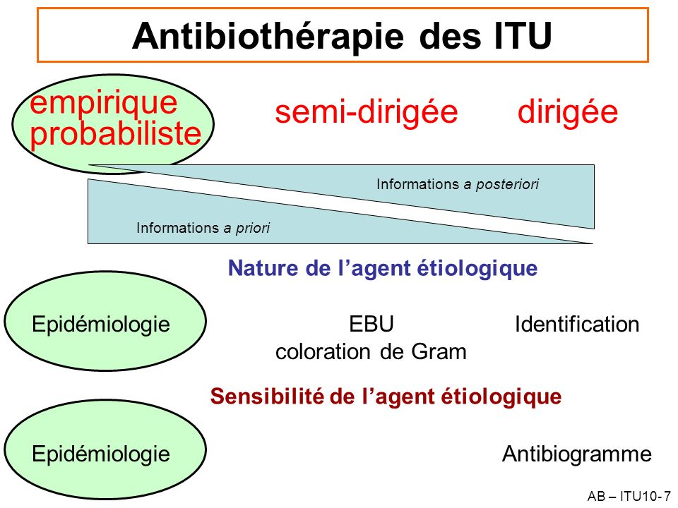Antibiothérapie des ITU