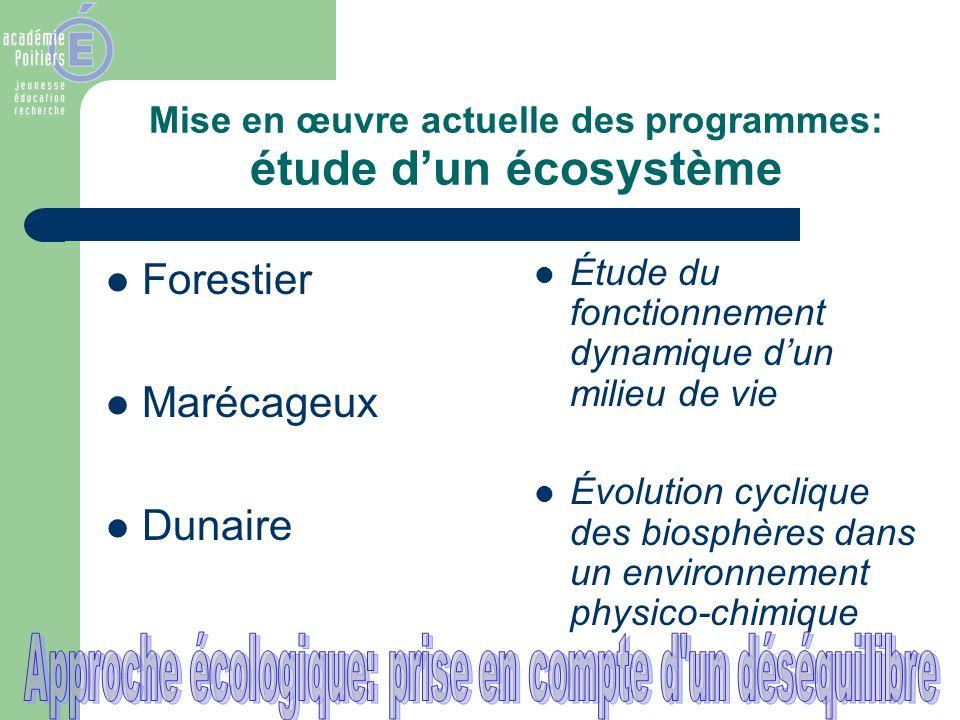 Mise en œuvre actuelle des programmes: étude d'un écosystème