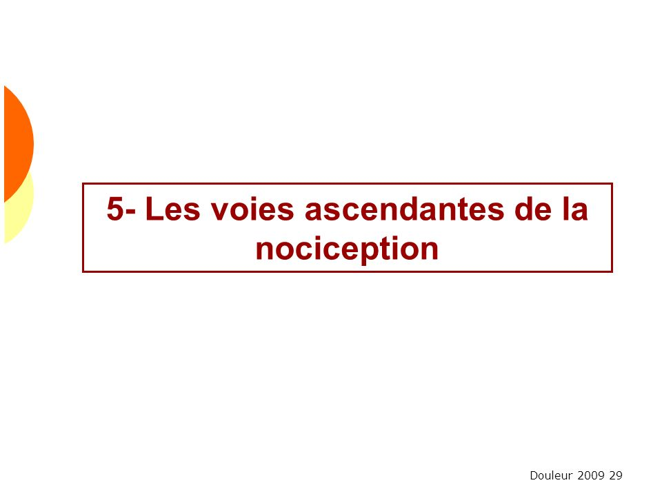5- Les voies ascendantes de la nociception