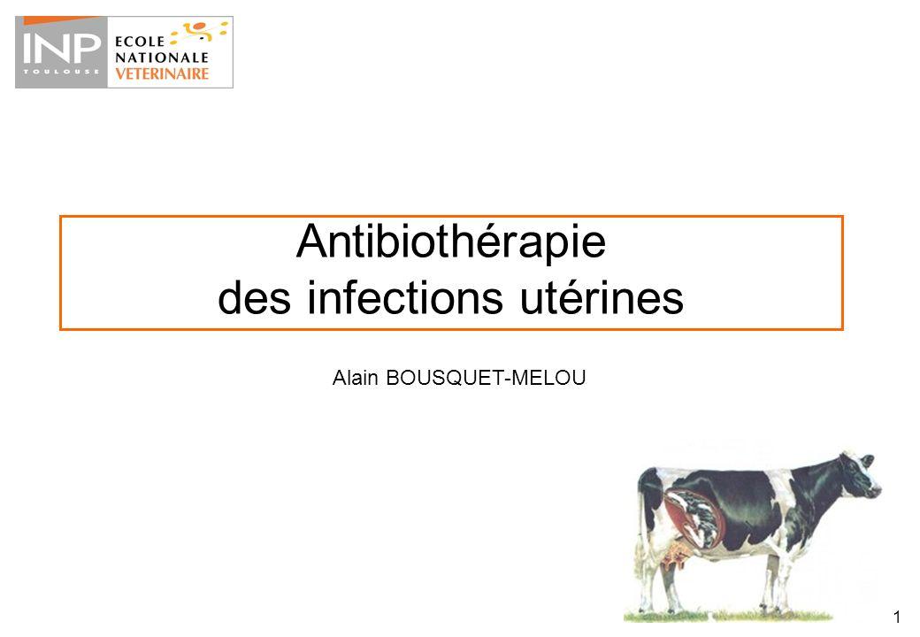 Antibiothérapie des infections utérines