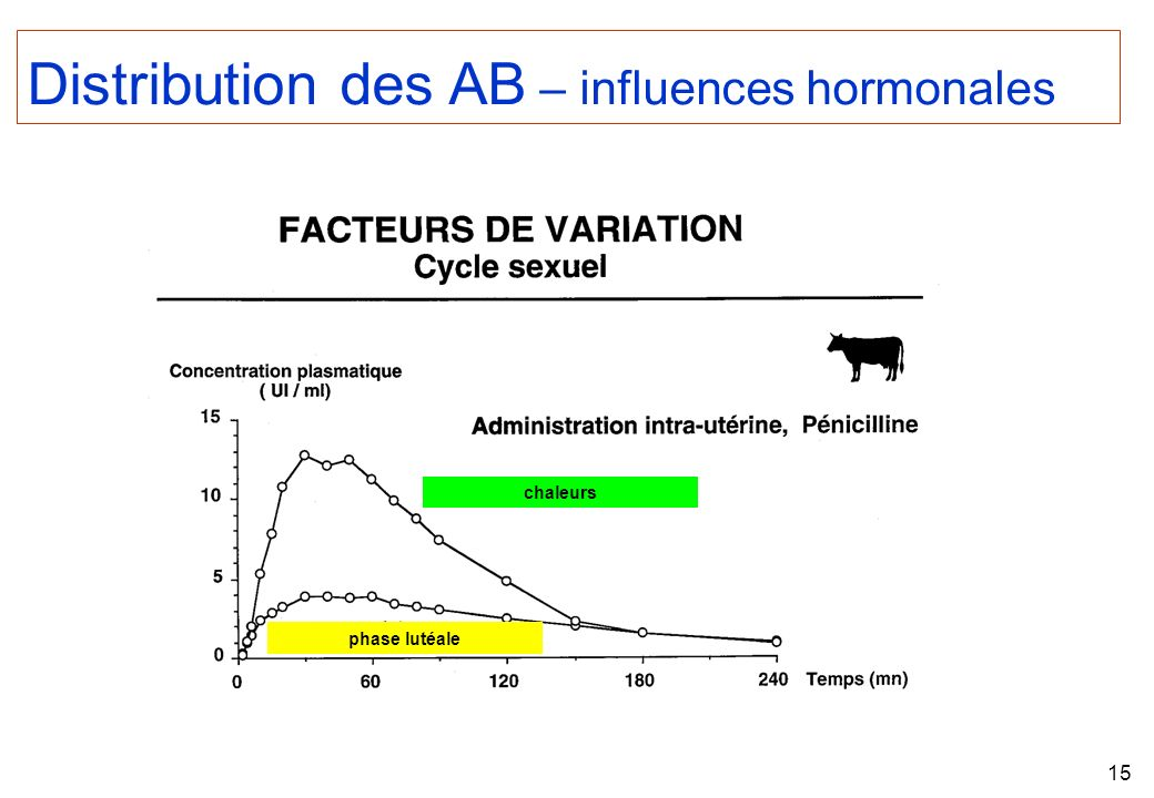 Distribution des AB – influences hormonales