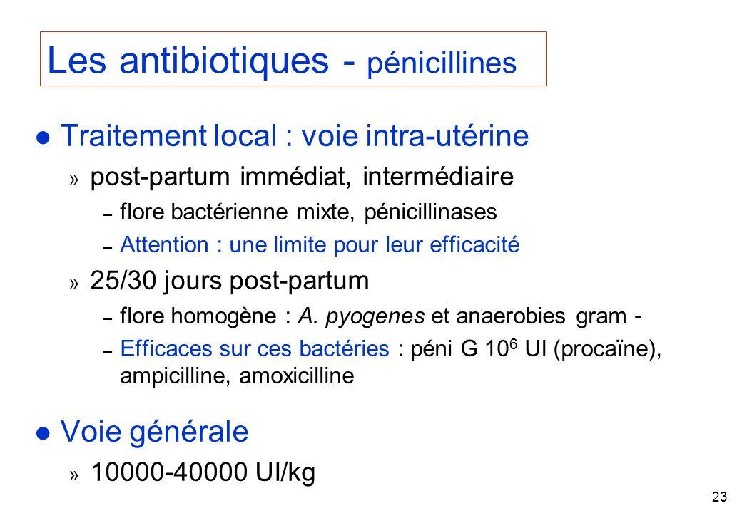 Les antibiotiques - pénicillines