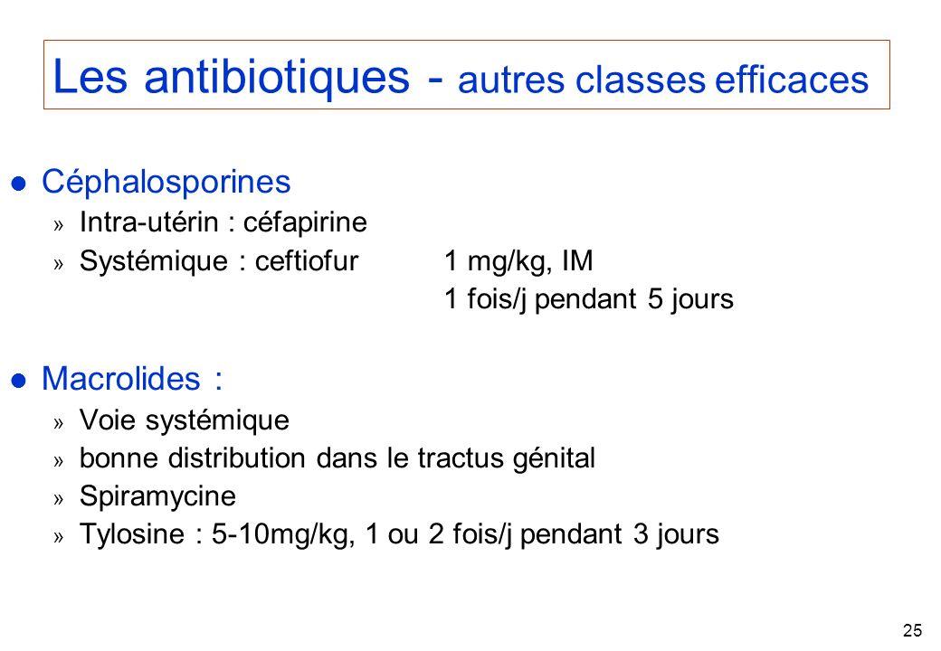 Les antibiotiques - autres classes efficaces