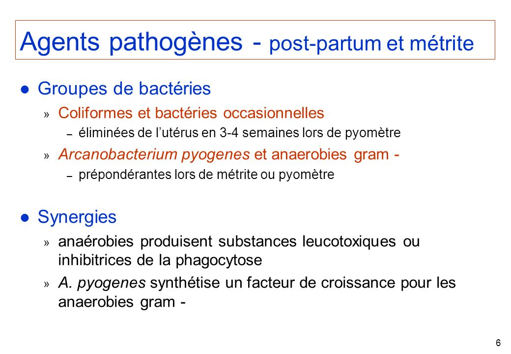 Agents pathogènes - post-partum et métrite
