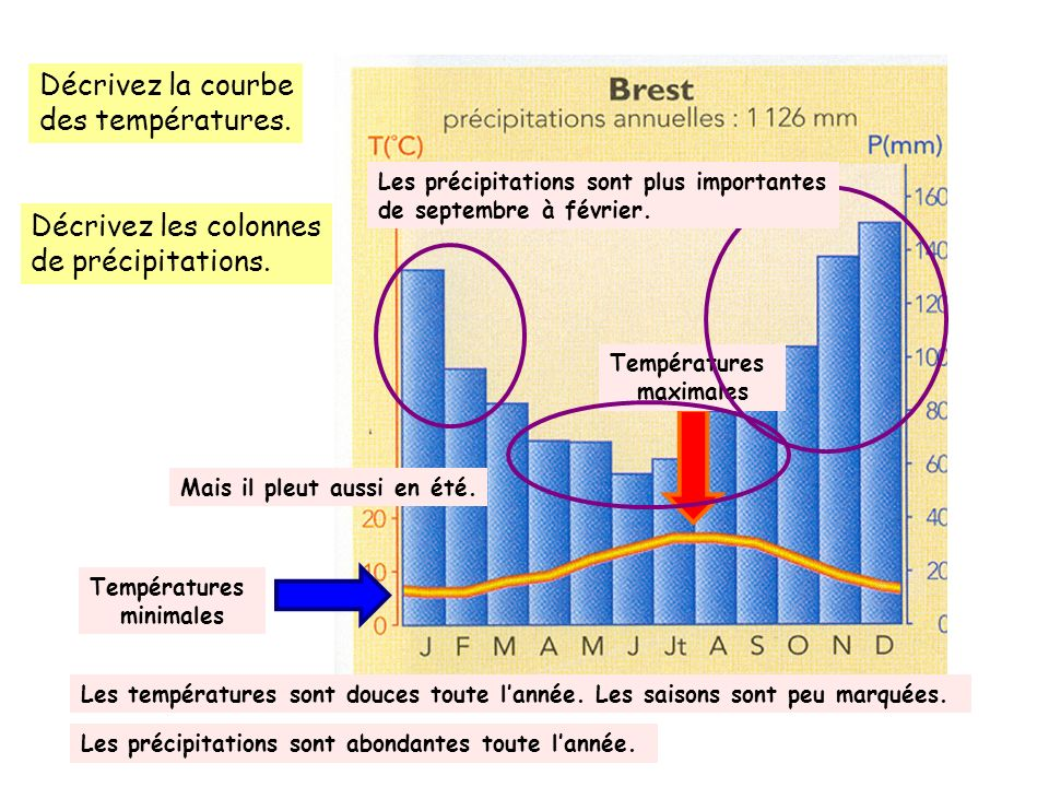 Décrivez la courbe des températures. Décrivez les colonnes