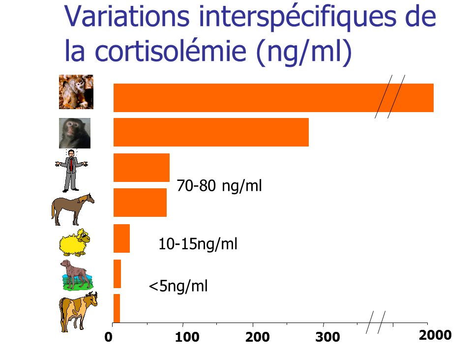 Variations interspécifiques de la cortisolémie (ng/ml)