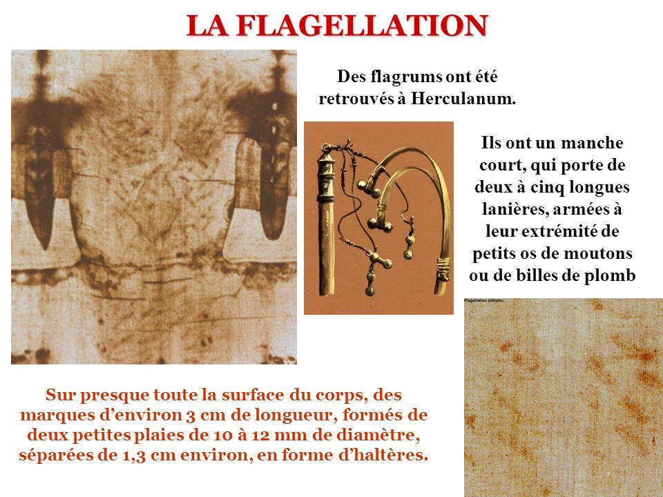Des flagrums ont été retrouvés à Herculanum.