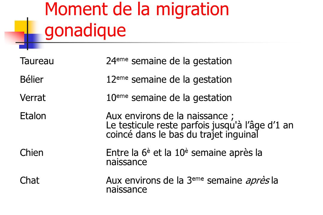 Moment de la migration gonadique